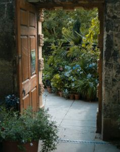 planning your outdoor space   look outside